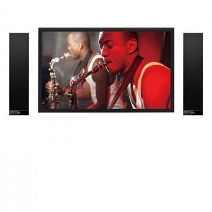 V300 TV Sound System