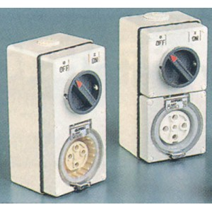 Combination Switched Socket