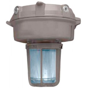 HID Well Glass Luminaire