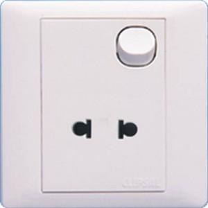 10 Amp 2 Pin Universal Switch