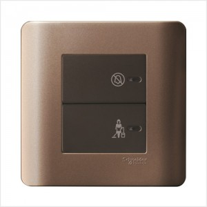 2 Gang Full-Flat Switch with Illuminated 'DND' & 'PCU' Symbols