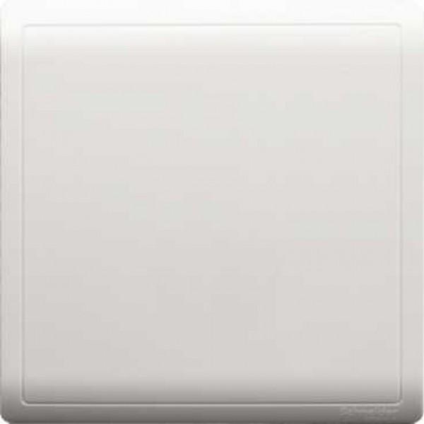 1 Gang Blank Plate
