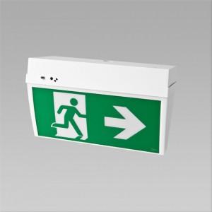 DIGINET Director LED - DALI Emergency - WGWE