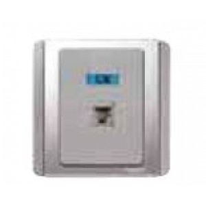1 Gang Data Outlet White finish, Silver Grey